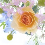 flowers_-_a_spring_bouquet_with_a_rose